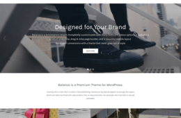 Balance eCommerce WordPress Theme